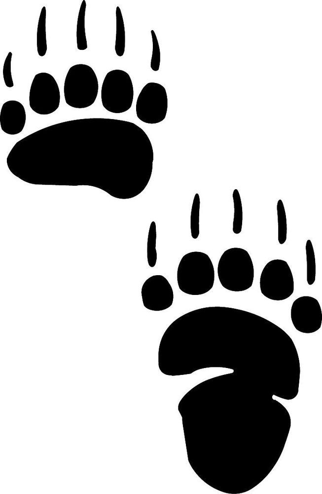 653x1000 Grizzly Clipart Footprint