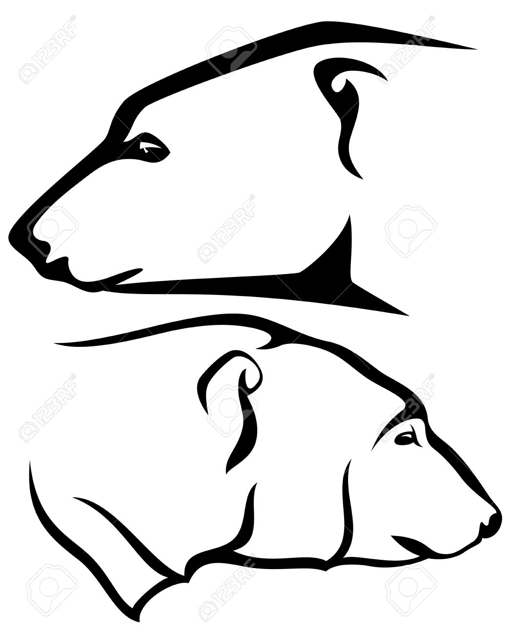 1053x1300 Polar Bear Head Profile