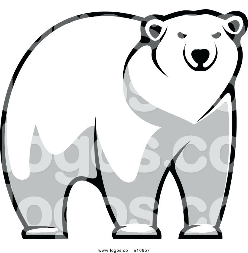 863x880 Polar Bear Outline Drawing Bears Coloring Pages Free Printouts