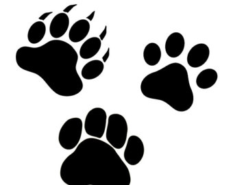 340x270 Paw Alphabet Svg Patrol Svgpaw Svg Files For Cricut