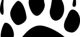 272x125 Black And White Bear Paw Print Clip Art