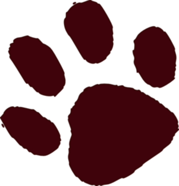 578x600 Bear Paw Print Brown Paw Print Md Free Images