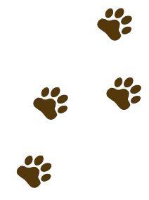 212x284 Best Photos Of Brown Bear Paw Prints