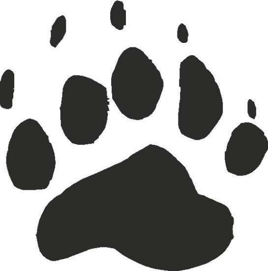 545x550 Black Bear Paw Print Tracks Decals And Stickers, The Home