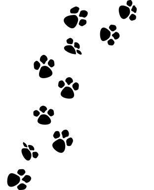 312x384 Raccoon Paw Prints Clip Art