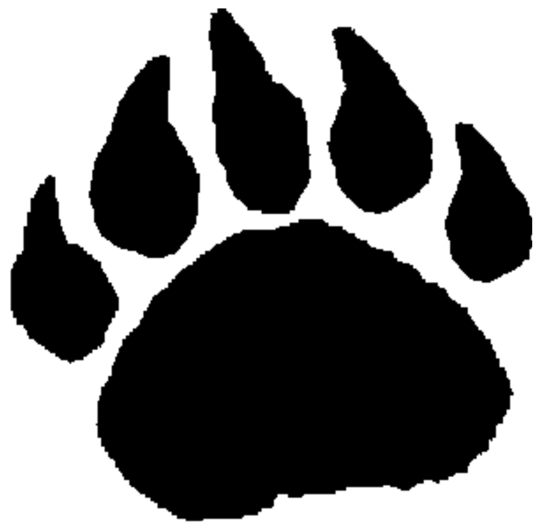 2284x2250 Bear Paw Prints Tattoo