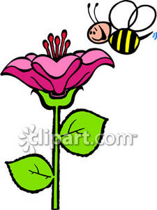 225x300 Bee on flower clipart