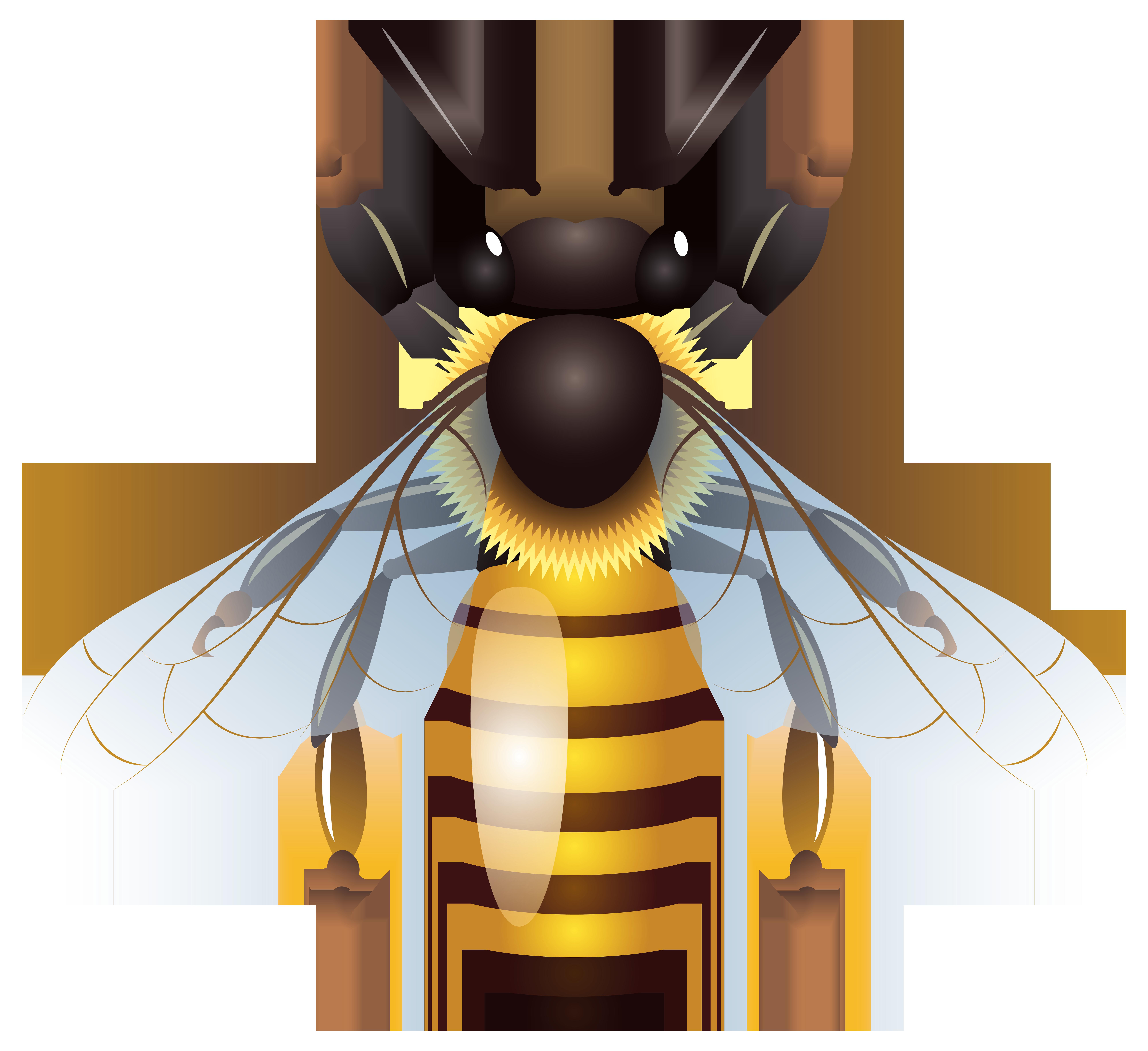 8000x7323 Bee Png Clip Art