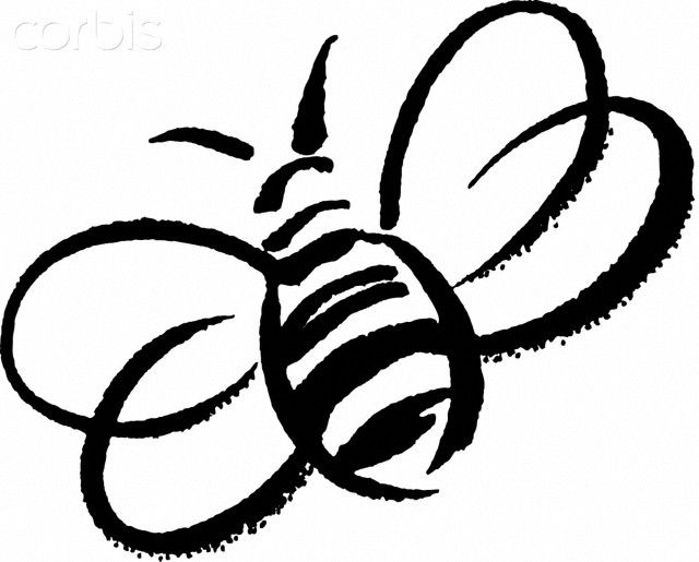 640x515 Bee clipart outline