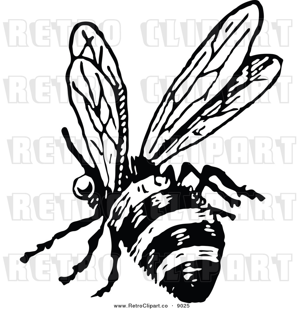 1024x1044 Vintage Honey Bee Clipart (40+)