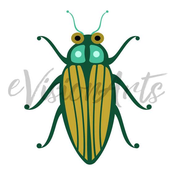 570x570 Bug Clip Art Insect Clip Art Bee Clip Art Dragonfly Clip