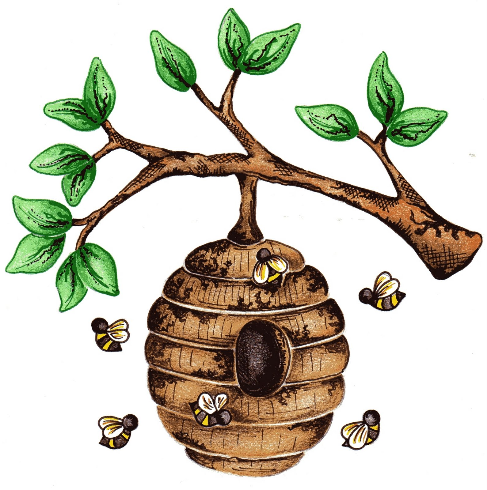 1589x1600 Beehive Images For Bee Hive In Tree Clip Art