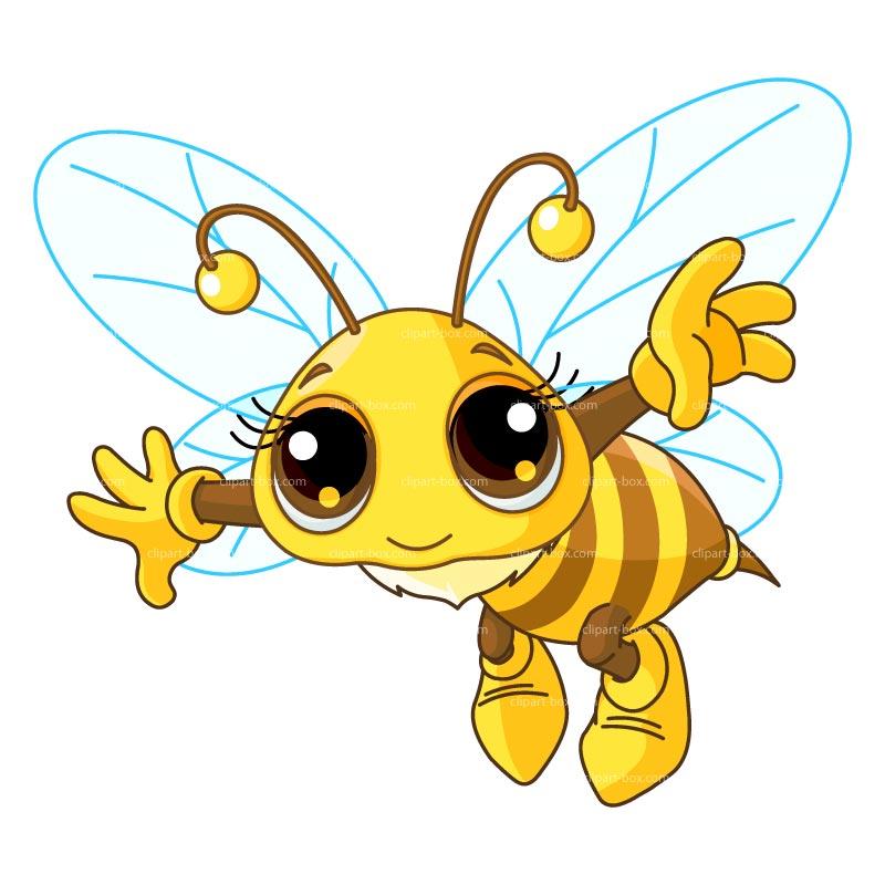 800x800 Flying Honey Bee Clipart