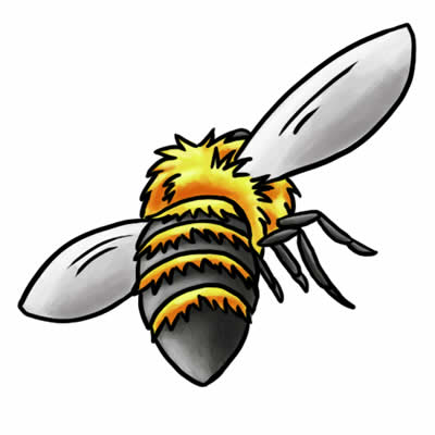 400x400 Carpenter Bee Clipart