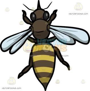 316x320 Bee Clipart