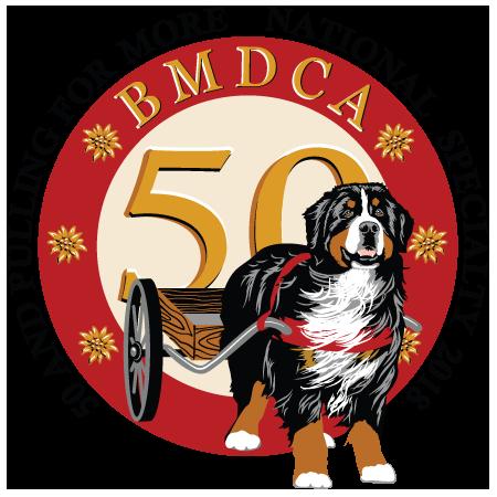 450x450 Bernese Mountain Dog Clipart Transparent