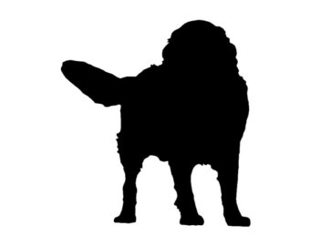 340x270 Bernese Decal Etsy