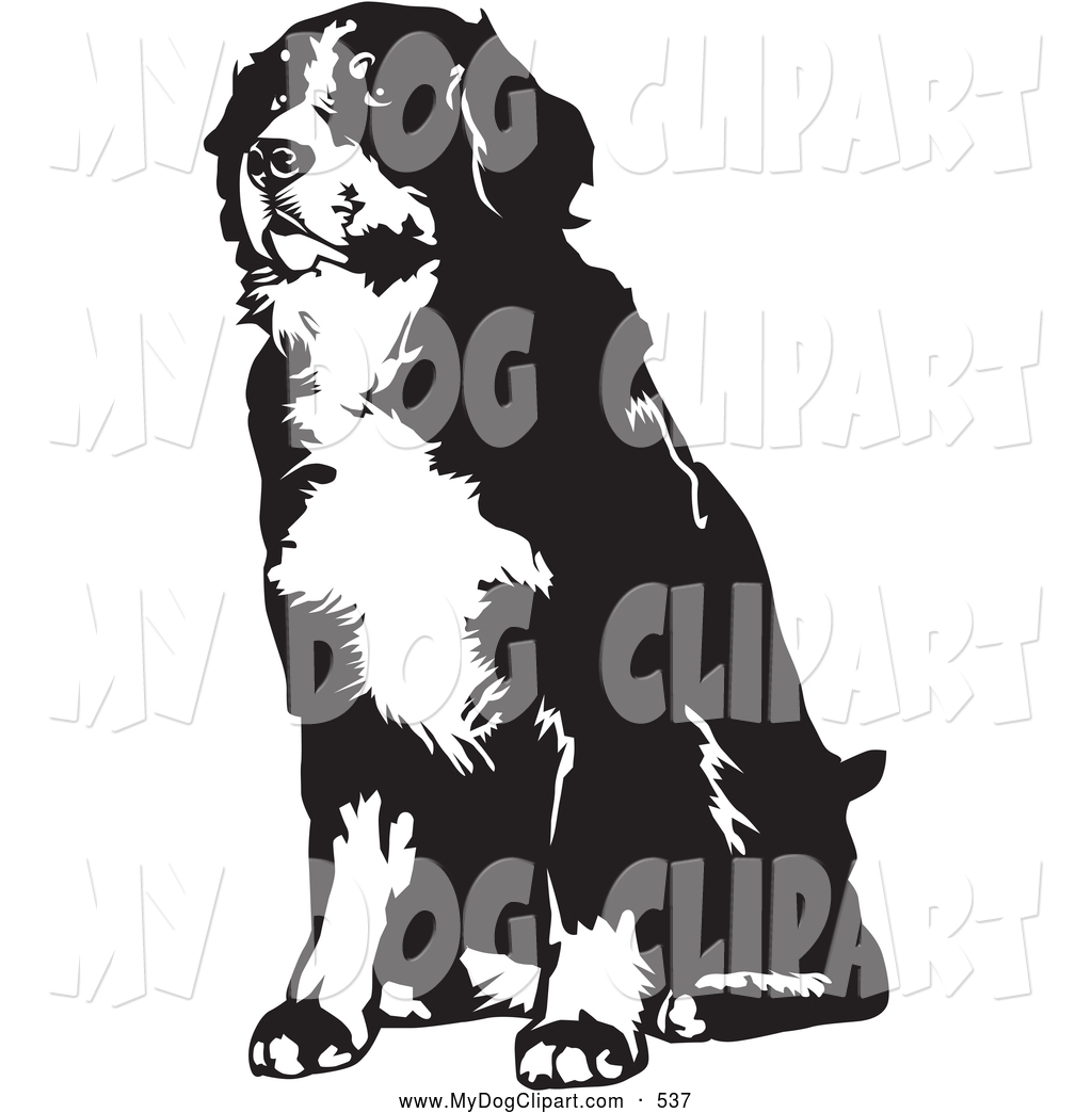 1024x1044 Clip Art Of A Cute Seated Bernese Mountain Dog Facing Slightly