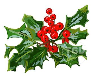 340x270 Holly Berry Clip Art Holly Clip Art Christmas Clip Art