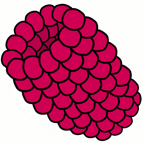 589x584 Berries Clip Art Download