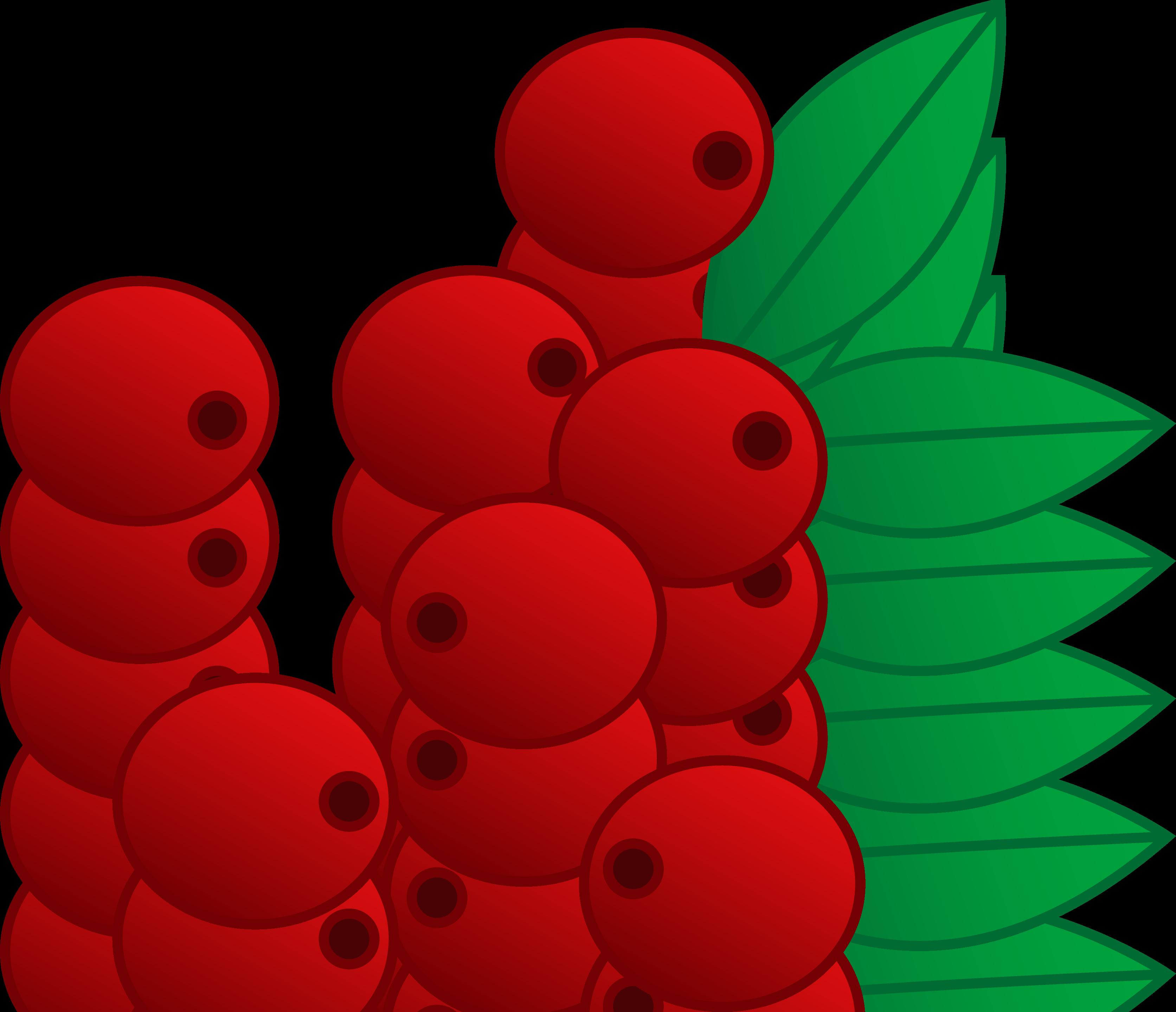 3345x2877 Red Cranberries Vector Art