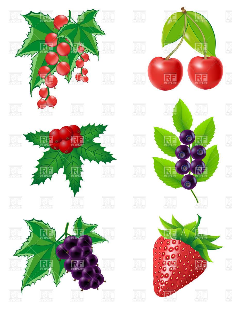 900x1200 Set Of Berries Royalty Free Vector Clip Art Image