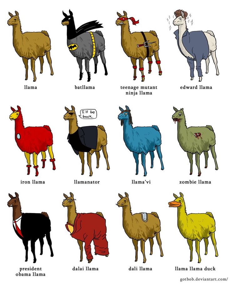 736x909 Alpaca Clipart Difference Between