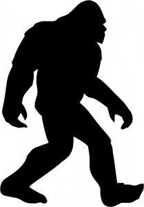 209x300 323 Best Sasquatch Images Aliens, Bigfoot Sightings