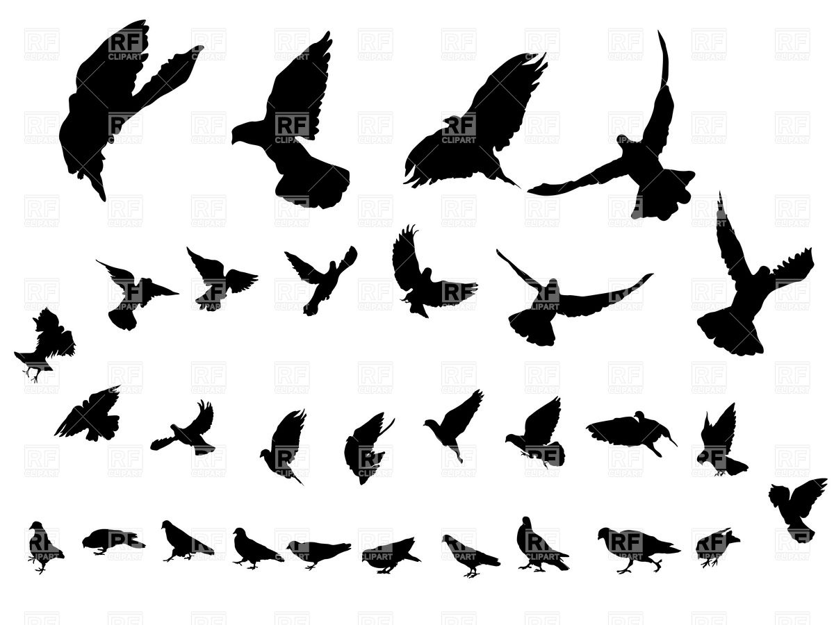 Bird Clipart Flying Free download best Bird Clipart Flying on