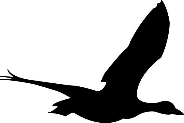599x400 Sea Bird Clipart Flight Drawing