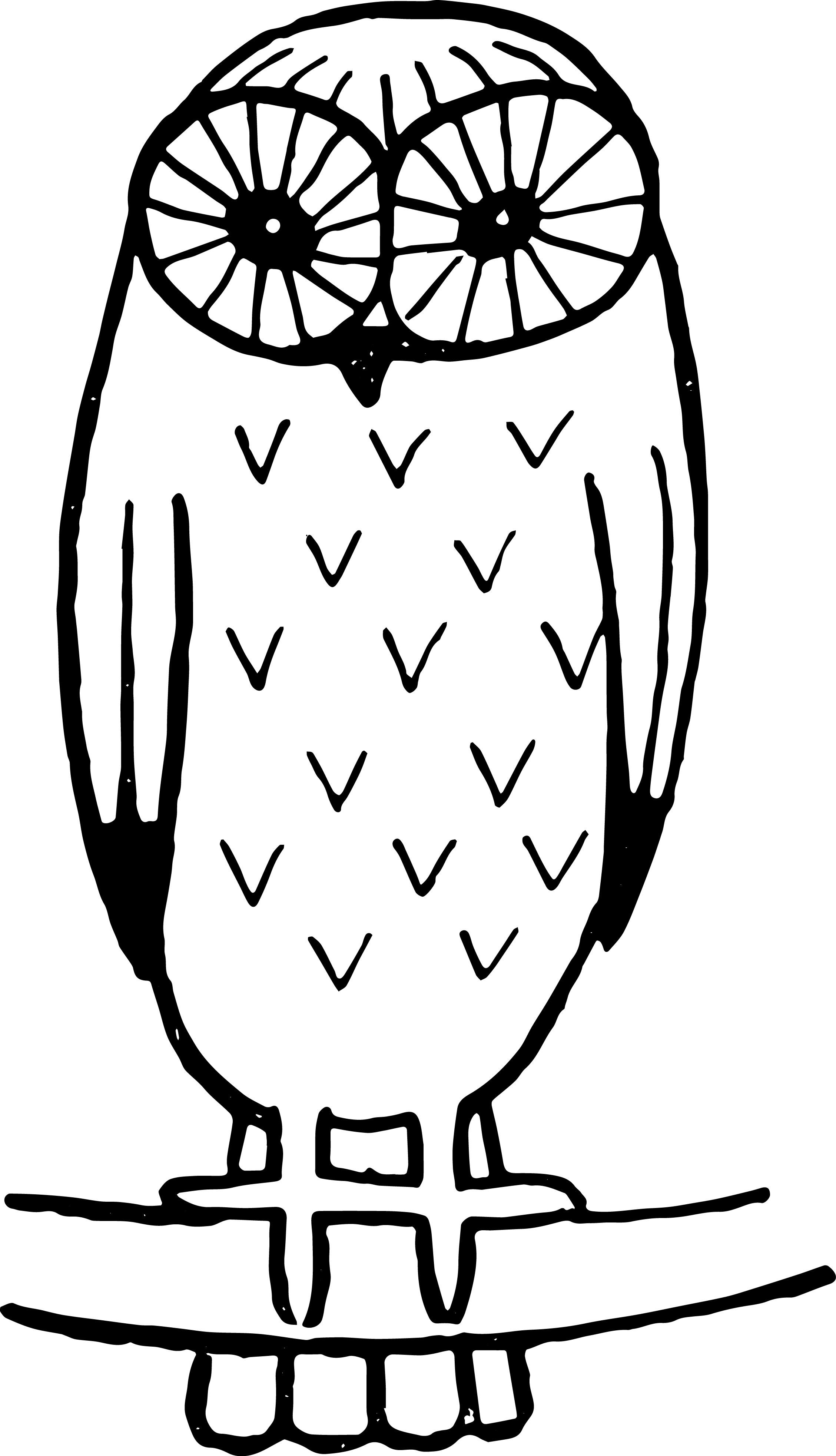 2256x3928 Barn Owl Clipart Outline