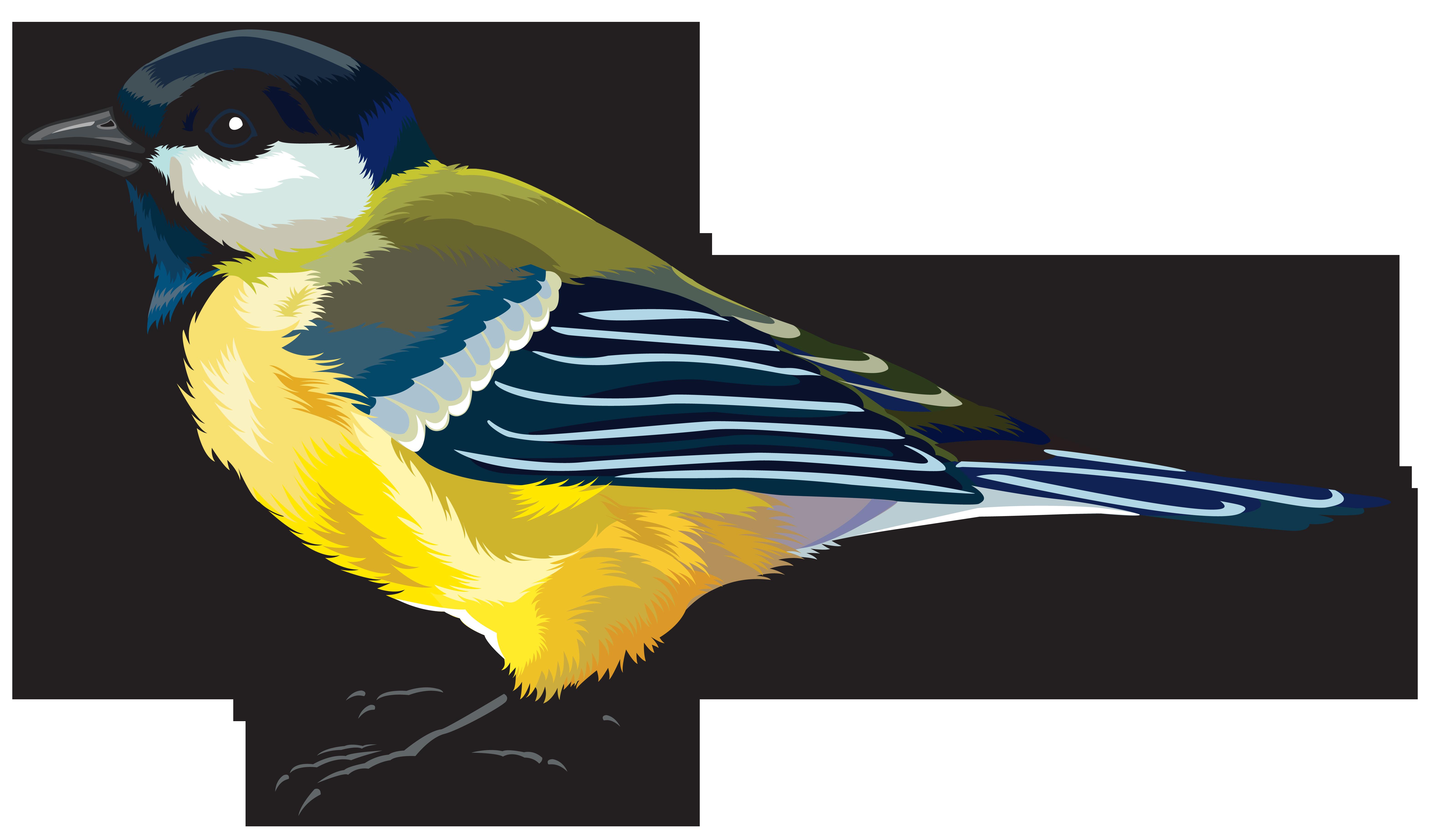 6291x3690 Finch Clipart Bird Png