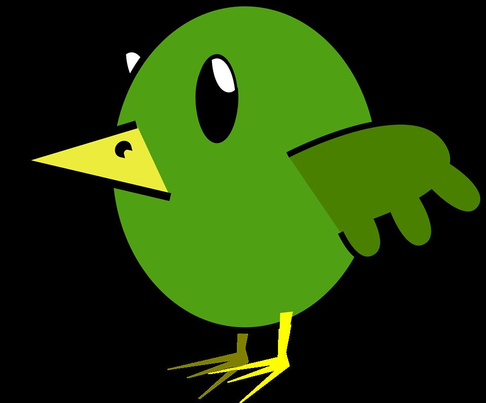 958x794 Parrot Clipart Transparent Background
