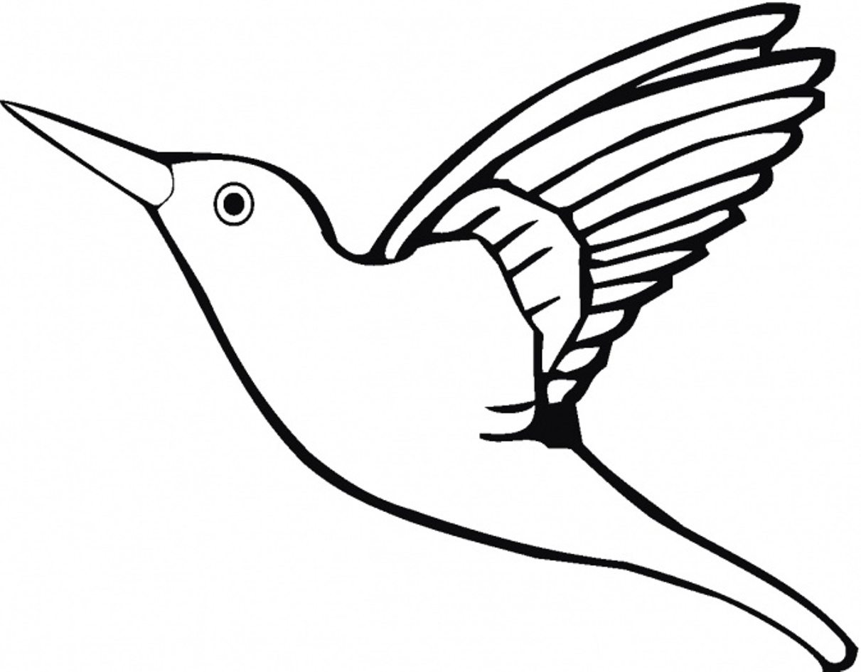 1211x945 Bird Coloring Page Hummingbird Animal Pages Of