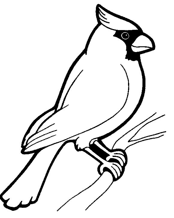 579x725 Bird Coloring Pages