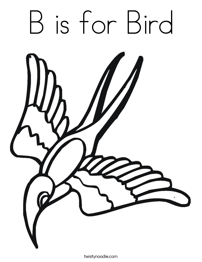 685x886 Bird Coloring Pages