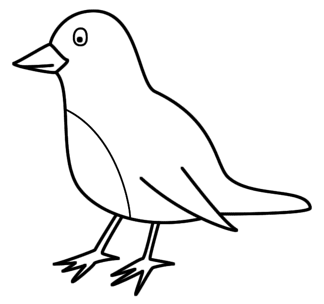 650x610 Bird Coloring Pages For Children
