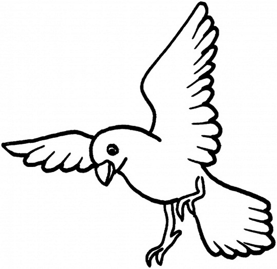 550x535 Bird Coloring Pages For Toddler