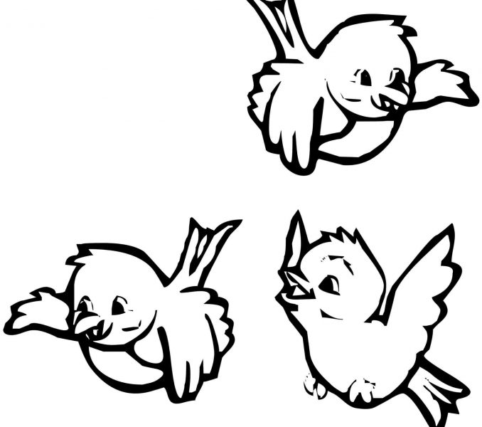 678x600 Birds Coloring Pages Best Coloring Pages
