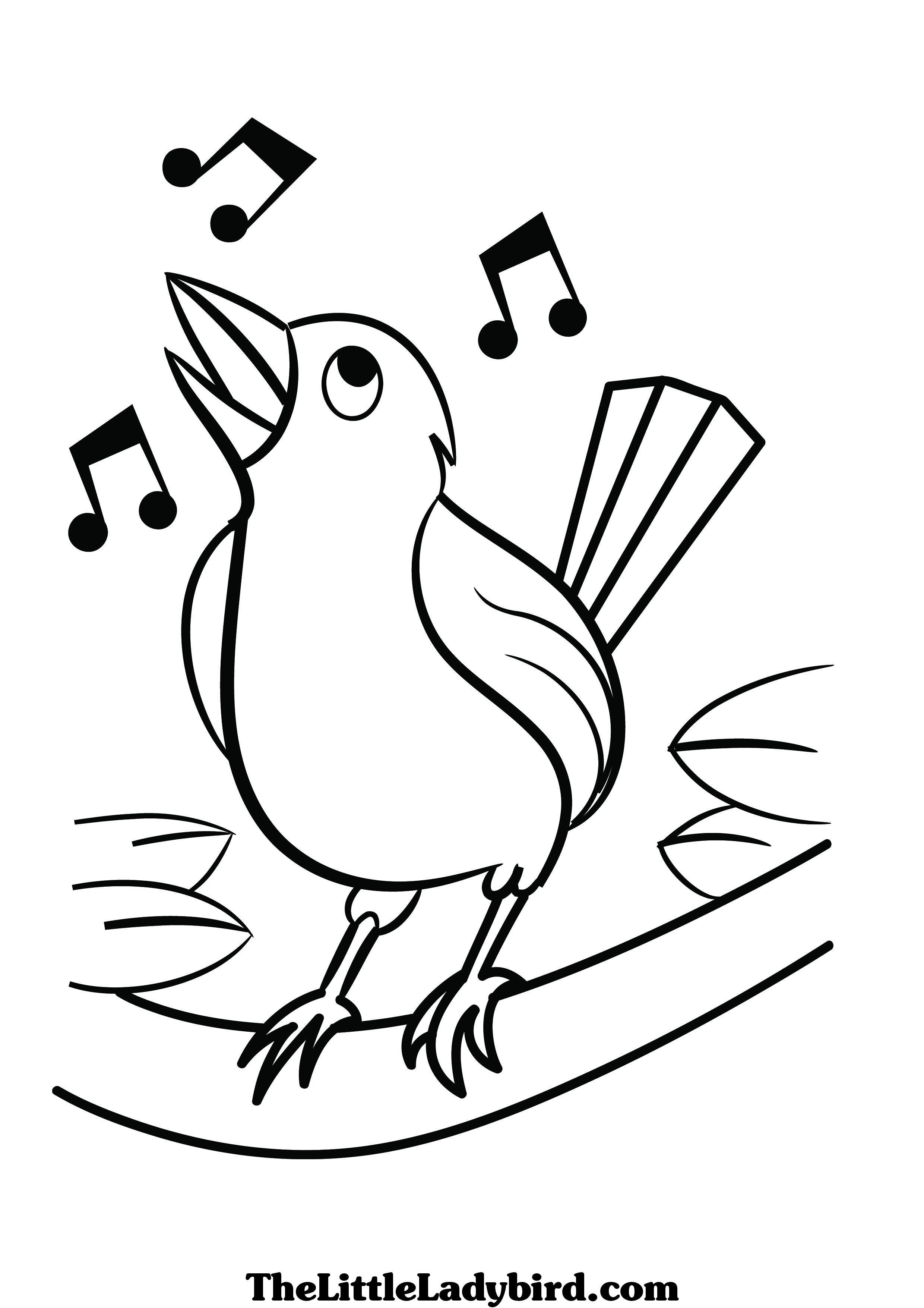 2480x3508 Free Birds Coloring Pages