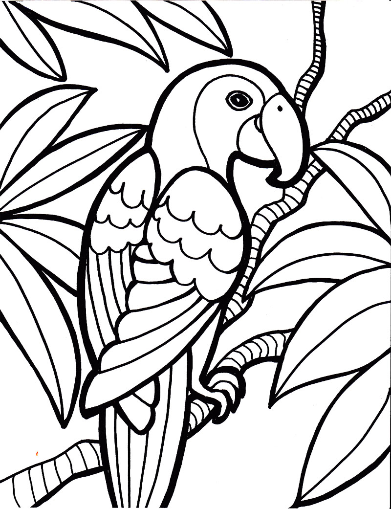 Bird Coloring Pages | Free download best Bird Coloring Pages on ...