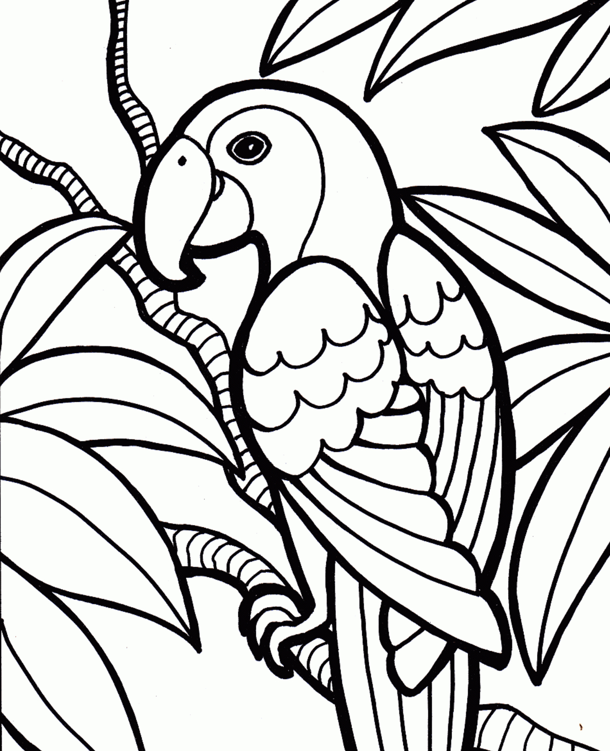 1188x1463 Best Free Parrots Bird Coloring Pages For Kids