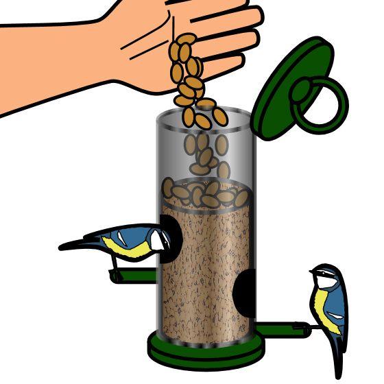 560x560 Graphics For Graphics Of Bird Feeders