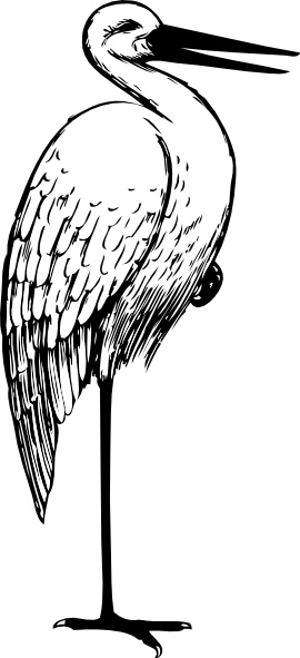 270x591 Bird Standing One Foot Clip Art Free Vector In Open Office Drawing