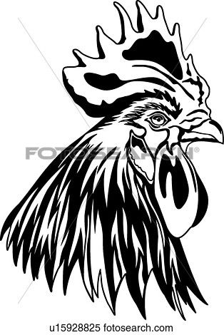 314x470 67 Best Roosters Images Symbols, Chicken And Clip Art