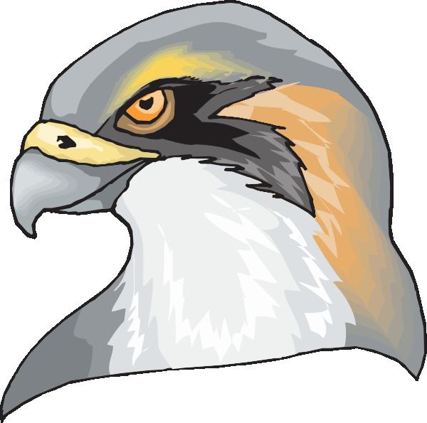 600x595 Hawk Head Clip Art