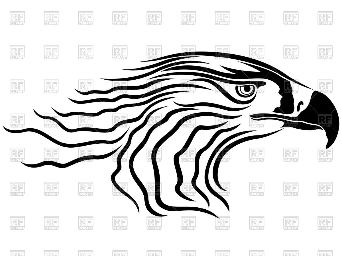 1200x900 Head Of Menacing Eagle, Side View Royalty Free Vector Clip Art