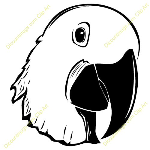 500x500 Parrot Clipart Face