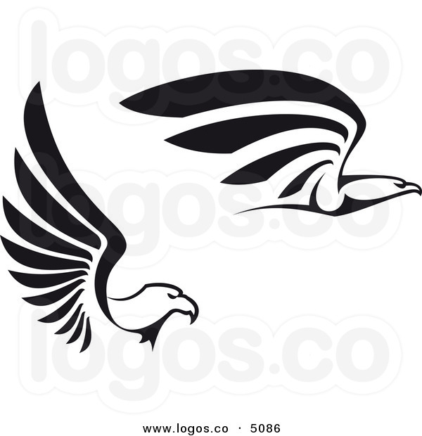 600x620 Pix For Gt Falcon Logo Clip Art Falcons Birds Of Prey