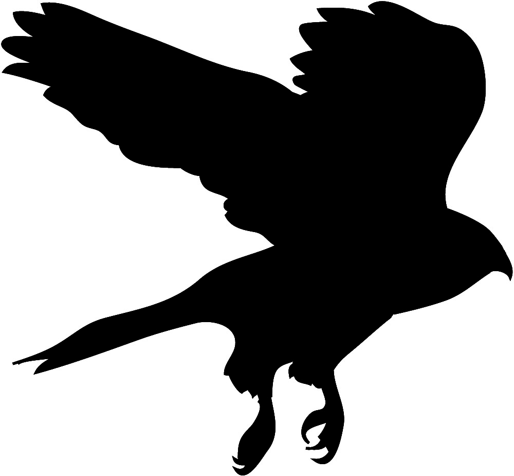 1000x925 Bird Of Prey Clipart Flight Silhouette Clip Art